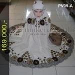 PV09-A3
